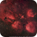 Cat's Paw Nebula (NGC 6334),                                Leandro Fornaziero