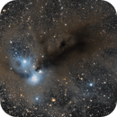 NGC 6729 Corona Australis,                                Amiel_Contuliano