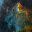 IC5070 - Nebulosa del Pelicano - The Pelican Nebula,                                Bror Federico Cederström