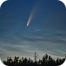 C/2020 F3 (neowise) and NCL clouds over Kyiv,                                Valentine Treshchun