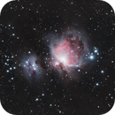 M42, Orion Nebula, Sony A6300, William Optics ZS61,                                feynman