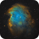 Monkey Head Nebula (NGC 2175) in SHO,                                Chuck's Astrophot...