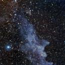 IC2118 - Witch Head Nebula,                                Nico Carver