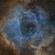 The Rosette Nebula,                                Martin Palenik