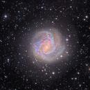 M83 the Southern Pinwheel with SADR Chili,                                Arnaud Peel