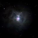 Iris Nebula - NGC 7023,                                Stefano Quaresima