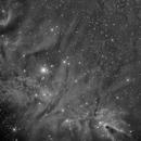 NGC2264 HA,                                Vincent