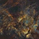 Per Aspera Ad Astra ( Cygnus widefield Mosaic ),                                Reza Hakimi