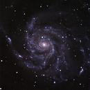 Messier 101,                                Günther Eder