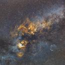 Cygnus Wide Field,                                Joel Quimpo