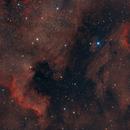 North American and Pelican Nebulae,                                Stephen Kirk