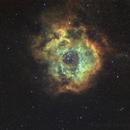 NGC2244,                                Gerhard Henning