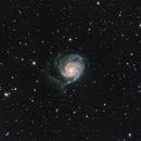 M101 LRGB,                                Byoungjun Jeong