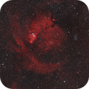 Widefield Cone Nebula Area,                                Jarrett Trezzo