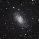 NGC 2403 Galaxy,                                Michael Timm