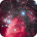 The Horsehead Nebula and Orion's Belt,                                Alan Dyer