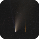 Neowise C/2020 F3 meets Meteor,                                Markus Bauer