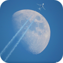 Fly Me to the Moon!,                                Damien Cannane