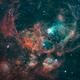 Lobster Nebula,                                Allan