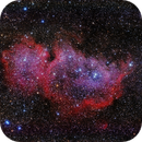 IC 1848 Nebulosa Alma,                                Ernesto Arredondo