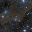 LDN 1235 - shark nebula,                                Jens Zippel