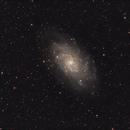 Triangulum Galaxy (M33),                                Roberto Frassi