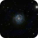 NGC3184  Spiral Galaxy in Ursa Major,                                Edward Overstreet