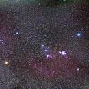 Orion,                                楊杰霖
