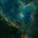Heart Nebula - Hubble Palette,                                Derek Foster