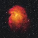 The Monkey Head Nebula in French Canadian Telescope Pallet,                                Brian Meyerberg