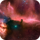 IC 434- The Horsehead Nebula,                                Matt Harbison