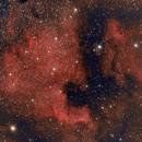 NGC7000,                                Philipp Weller