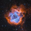 Rosette Nebula, Caldwell 49, H-alpha - O-III bicolor,                                Björn Hoffmann