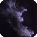 Witch Head Nebula IC2118 (starless),                                AstroEdy