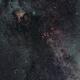 Cygnus widefield,                                PieterjanD
