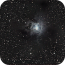 NGC 7023 - Iris Nebula in Cepheus,                                Francois Theriault