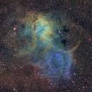 Sh2-132 Lion Nebula,                                Arvid Emtegren