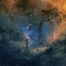 IC 1396 SHO,                                Richard White
