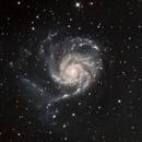 M101 Pinwheel,                                David Scharlach
