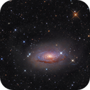 The Sunflower Galaxy (crop),                                -Amenophis-