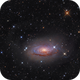 The Sunflower Galaxy (crop),                                -Amenophis-