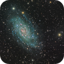 NGC 2403 Drizzled,                                Miles Zhou