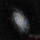 M33 Triangulum Galaxy,                                Angelillo