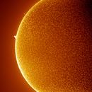 SUN in H-Alpha,                                Luk