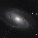 M81 - Bode's Galaxy,                                Taman