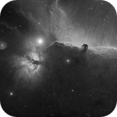 The Horsehead and Flame Nebulae - Hydrogen-alpha - Two-panel mosaic,                                Eric Coles (coles44)