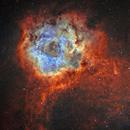 Rosette Nebula (Caldwell 49) SHO,                                Will Czaja