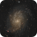 At the T60, Pic du Midi, M33 Grand Galaxy,                                apricot