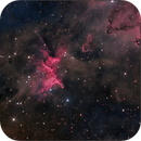 Melotte-15, Heart of the Heart,                                Randal Healey
