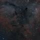 Nebulosity in IC1396,                                404timc